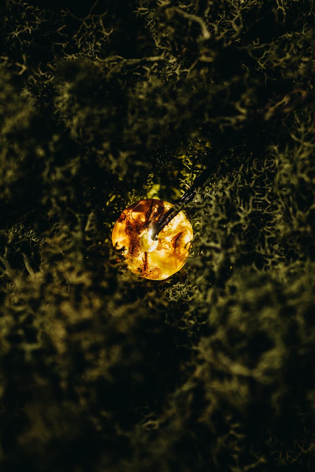 MAXI amber amulet GINTARAS  - 5